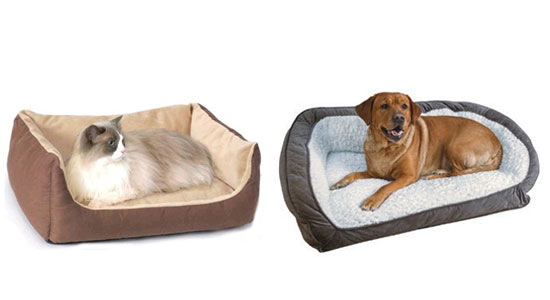 dog and cat sitting on Heated Pet Beds