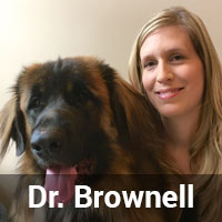 Dr. Brownell